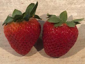 Fresh Strawberries for Strawberry Banana Bread